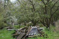 Rommelhoop in fruitboomgaard